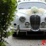 RedOrca Exotic Car Rental